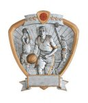 Signature Series Shield Awards -Basketball Shields - Click Here for More of This Style
