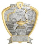 Signature Series Shield Award -Knowledge Shields - Click Here for More of This Style