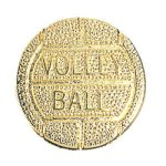 Volleyball Chenille Pin Volleyball