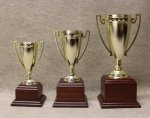 260-262  Cups  9 - 12 1/2 Wood Trophies - Click Here For More Styles